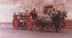 firehorses3